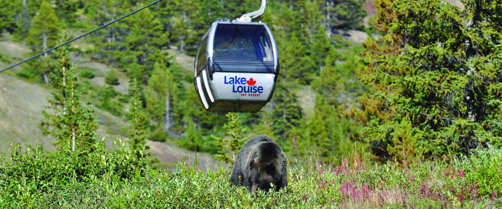 Lake Louise Summer Gondola
